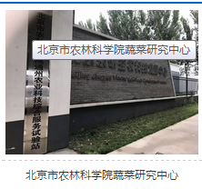 工程案例北京市农林科学院蔬菜研究中心